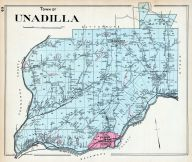 Unadilla Town, Otsego County 1903